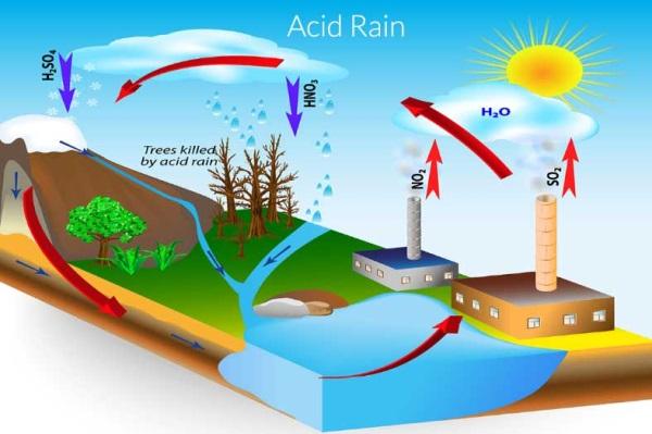 Nước mưa bị ô nhiễm